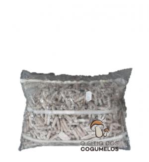 Cavilhas Inoculadas Shiitake (1000 Cavilhas)