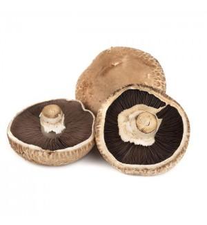 Cogumelo Portobello (kg)